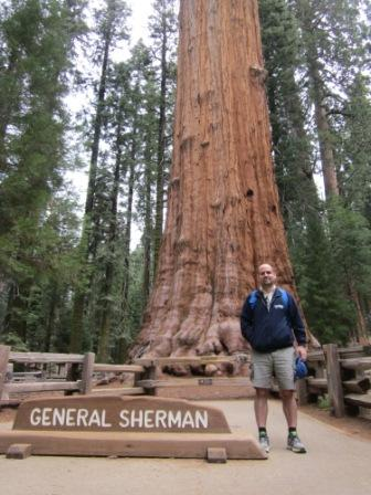 General Sherman Tree.
