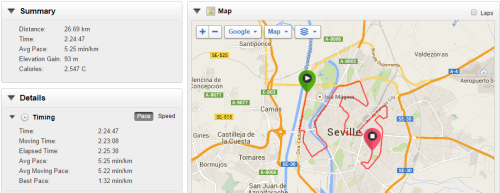 My Garmin data from Seville marathon.